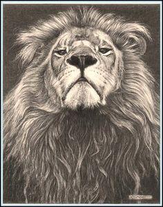 upkeep the ape: Kevin Hayler (UK) - pencil illustration