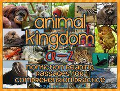 26 Nonfiction Reading Comprehension Passages Animals A-Z! Perfect for test prep, literacy centers, reading interventions, extra reading practice, and meeting the COMMON CORE!!!