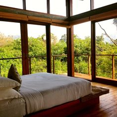 A Glass House In The Sri Lankan Jungle | SkyWithLemon. stories from a next gen nomad.