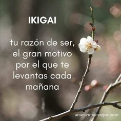 Cute Words, Weird Words, Pretty Words, New Words, Beautiful Words, Negativity Quotes, Korean Phrases, Language Quotes, Magic Words