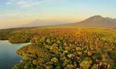 National Parks of East Java, Indonesia Best Places To Travel, Places To Visit, Green Scenery, Mangrove Forest, Kitesurfing, Asia Travel, Savannah Chat, Alice In Wonderland, Bali