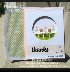 July 2017 Paper Pumpkin kit Positively Picturesque Alternative Melissa Colledge Stampin' Up! Demonstrator www.ColledgeCreations.StampinUp.Net