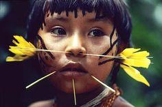 Peuple de chasseurs et d'horticulteurs de la forêt amazonienne, les Yanomami habitent un territoire situé de part et d'autre de la frontière du Brésil et du Venezuela. Au Brésil, ils sont aujourd'hui 12 500 répartis, sur 96 650 Km, en 188 villages et maisons collectives dans les États nord amazoniens d'Amazonas et de Roraima
