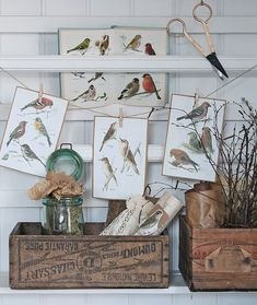 rustic, very nice :) Vibeke Design, Vintage Vignettes, Store Displays, Market Displays, Vintage Birds, Farmhouse Chic, Cottage Style, Sweet Home, Shabby Chic
