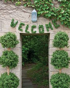 A whimsical greeting, geometric topiaries, and oversize initials will infuse a classic outdoor setting with contemporary charm. Spell out a warm welcome -- and give your guests a hint of what's to come. Hang signage made from boxwood leaves, which are available year-round, and frame the doorway with sculptural topiaries.