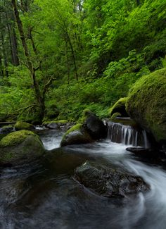 Photo Green Harmony by Dustin Gent on 500px Outdoorsy Style, Waterfall, Scenery, Paisajes, Landscape, Lugares, Waterfalls, Nature