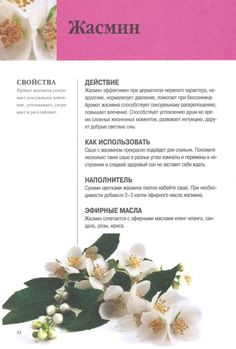 Health Facts, Health Tips, Health And Wellness, Natural Medicine, Herbal Medicine, Homemade Cosmetics, Health Eating, Aromatherapy, Herbalism