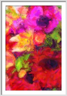 Magenta Red White and Yellow FLOWER  Fine Floral by Murray Eisner on museum quality watercolor paper, $49.00