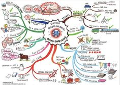 Mind map of Eco actions