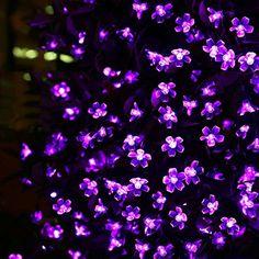 LE® Solar Fairy Lights, 23ft, Waterproof, 50 LEDs, 1.2 V, Violet, Portable, with Light Sensor, Outdoor Blossom String Lights, Ideal for Christmas, Wedding, Party Lighting EVER http://www.amazon.com/dp/B00OH4XRDM/ref=cm_sw_r_pi_dp_niz4ub0NSAY5G