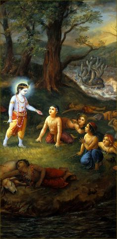 Krishna Lilas - The Nectarian Pastimes of the Sweet Lord Hare Krishna, Krishna Lila, Little Krishna, Lord Krishna Images, Radha Krishna Images, Krishna Pictures, Krishna Photos, Krishna Radha, Krishna Birth
