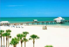 clearwater beach, florida Great place to tan, snorkel, and get your sandwich stolen by a gull.