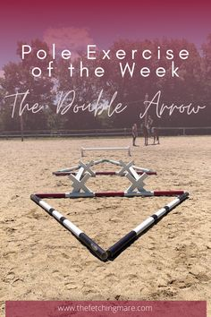 """Flat rides are not typically the most exciting rides. A fun way to mix it up is to add in ground poles - check out this """"Pole Exercise of the Week""""! Work Horses, Black Horses, Andalusian Horse, Friesian Horse, Arabian Horses, Horse Exercises, Training Exercises, Workouts, Reining Horses"""