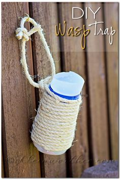 Wasp Control with DIY Wasp Trap re-purposed International Delight creamer bottle.