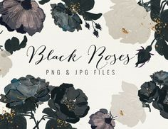 Black Roses by Webvilla on @creativemarket