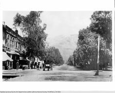 Euclid Avenue in Ontario, looking north toward the mountains, 1895