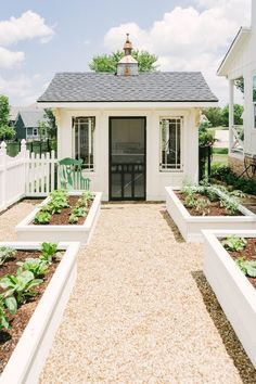 Raised Garden Beds Discover Blooming Ivy Lane Farmhouse Home Tour Farmhouse Living Classic Farmhouse Home Tour - White Potting Shed - White Raised Beds - Modern Garden - Farmhouse Backyard - Modern Farmhouse Yard - Backyard Landscape Farmhouse Landscaping, Farmhouse Garden, Farmhouse Homes, Backyard Landscaping, Farmhouse Style, Farmhouse Decor, Garden Farm, Modern Farmhouse Design, Rustic Decor