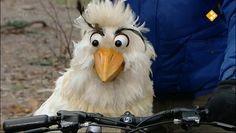 HBB De fiets - Aflevering 438. Fahd heeft een nieuwe mountainbike. Na lang zeuren mag Raaf er even op. Hij belooft geen kunstjes uit te halen, maar doet het stiekem toch. In deze aflevering leren de kinderen meer over fietsen. straat  weg  verkeer  veiligheid  fiets  band