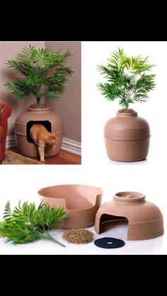 Car litter box concealed in pottery plant holder!