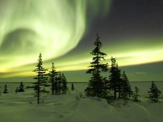 The-Northern-Lights-in-Winter-Churchill-Manitoba-Canada