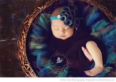 Peacock Fascinator on Newborn - 26 Newborn Photos that Will Make Your Heart Skip a Beat on I Heart Faces Photography Blog