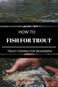 This is helpful. #flyfishingknots