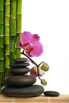 Fotomural o lienzo de www.muralesyvinilos.com