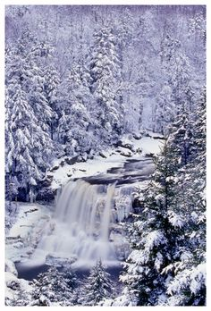 Blackwater Falls State Park, West Virginia. I want to go see this place one day. Please check out my website thanks. www.photopix.co.nz