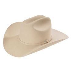 5dbdd1878ba 10x Stetson Shasta - Stetson is the standard in hats