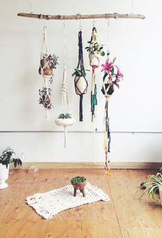 macrame planters hanging from a rustic branch