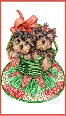 Yorkshire Terrier - Christmas Puppies -  by Margaret Sweeney