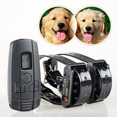 Special Offers - Aetertek At-211sw Small Dog Shock Collar Water-resistant Dog Trainer Rechargeable 2 Dog Cat Training Shock Vibrate Anti Bark Collar - In stock & Free Shipping. You can save more money! Check It (September 17 2016 at 02:58AM) >> http://dogcollarusa.net/aetertek-at-211sw-small-dog-shock-collar-water-resistant-dog-trainer-rechargeable-2-dog-cat-training-shock-vibrate-anti-bark-collar/