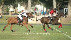 2/25/14 UAE v Bin Drai at Dubai Polo and Equestrian Club...#3 Agustin Martinez