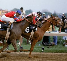Affirmed and Alydar. I still root for Alydar even though I know he doesn't win.