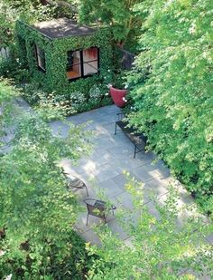 Ivy-covered art studio and courtyard.