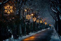Christmas decorations in Bucharest Romania