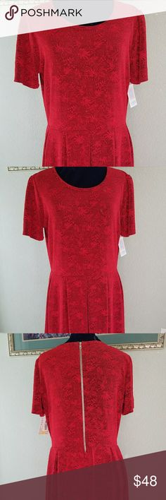 ❤ LuLaRoe Red Amelia Dress Sz 3x NWT ! I am re-Poshing this amazing LuLaroe Amelia dress. I love red, but only blue- toned reds look good on me. I had hoped this would be cherry red, but it is definitely an orange-y tomato red. Sadly, not my color at all.   The dress is fabulous. The fabric is a beautiful jacquard floral. Fully lined, with Amelia styling.  Scoop neck,  pockets, zip back and a pleated skirt. You can't go wrong with this beauty.   Smoke free home but we do have pets. LuLaRoe…