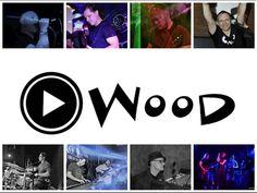 Playwood at Taste of Polonia Festival 2014