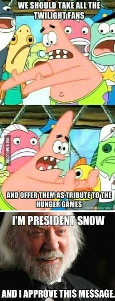 Hunger Games / Twilight meme - now that's a plan