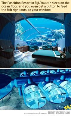 The Poseidon Resort in Fiji. You can sleep on the ocean floor and there's even a button to feed the fish outside your window.