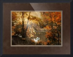 """""""Autumn Afterglow"""" by Jessica Jenney, Bronxville, NY //  // Imagekind.com -- Buy stunning fine art prints, framed prints and canvas prints directly from independent working artists and photographers."""
