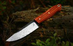 Tulip wood bushcraft knife