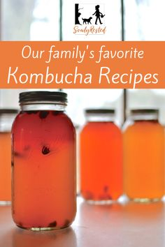 Here are many kombucha recipes for delicious, carbonated, fruity ways to add a gut-healthy drink to your family's diet. Kombucha Flavors, Kombucha Recipe, Sin Gluten, Kombucha How To Make, Diet Books, Alkaline Diet, Fermented Foods, Healthy Drinks, Healthy Food