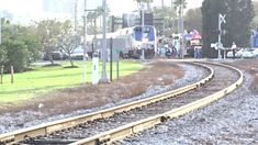 Tampa Bay Amtrak 91 Train Departing 5 hours late