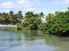 Dubois Park in south Florida. Been here a couple of times during two vacations. Last time I went was about two years ago.. i miss it!