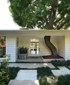 Mid Century Modern Cool! Modern curb appeal! Modern home entrance and porch that is built around an existing tree! Too cool! LOVE the front walkway too!
