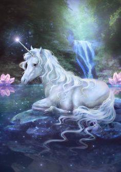 Laly Bichos - Google+ Unicorn Fantasy Myth Mythical Mystical Legend Licorne Enchantment Einhorn unicorno unicornio Единорог jednorožec Eenhoorn yksisarvinen jednorożca unicórnio Egyszarvú Kirin