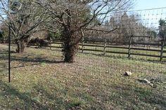 1000 Images About Outdoor D 233 Cor Decorative Fences On