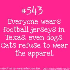 The Big Bang Theory: Everyone wears football jerseys in Texas, even dogs. Cats refuse to wear the apparel. ~ Sheldon