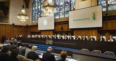 "Monsanto will be put on trial for crimes against nature and humanity in The Hague at World Food Day, Oct. 16, 2016. Vandana Shiva said ""Monsanto's GMOs in order"
